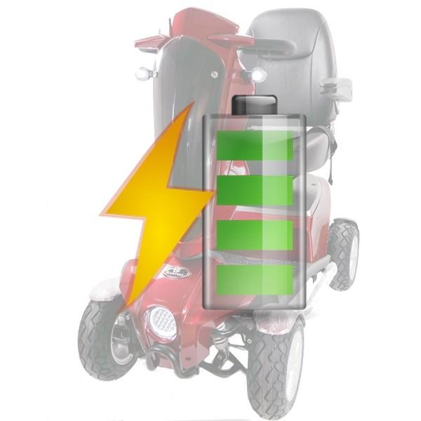 batterie per ricambio per scooter per disabili S16