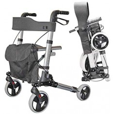 girello per disabili Termigea RO14